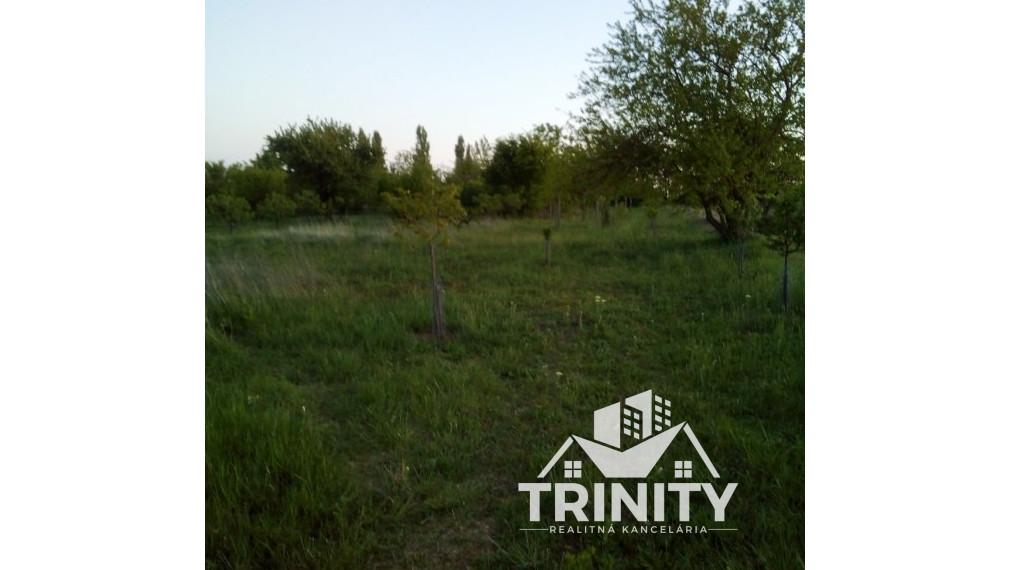 Pozemok NA PREDAJ v obci Svodín